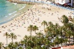 Beach people palms Stock Photos
