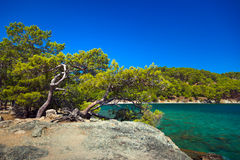 Beach at Phaselis in Antalya, Turkey Royalty Free Stock Image