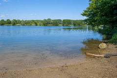At the Beach. Photo of a german lake - clear water, blue reflection - trees all around Royalty Free Stock Photos