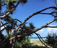 Beach photography. Mixed media art and photography Royalty Free Stock Photo