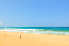 Beach at Phu Yen province Stock Image