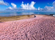 Beach with pink sand Royalty Free Stock Photos