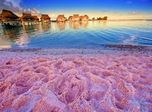 Beach with pink sand and lodges on water. Landscape in a sunny day Stock Photo