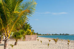 Beach at Placencia, Belize. Stock Photography