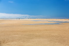 Beach Playa de Sotavento, Canary Island. Fuerteventura, Spain royalty free stock image
