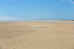 Beach Playa de Sotavento, Canary Island Fuerteventura, Stock Image