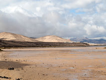 Beach Playa de Sotavento, Canary Island Fuerteventura. Spain royalty free stock photography