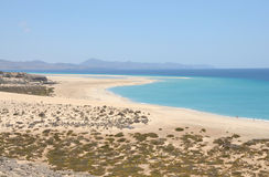 Beach Playa de Sotavento, Fuerteventura Royalty Free Stock Photo