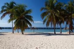 On the beach Playa Giron, Cuba. stock images