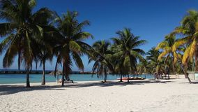 On the beach Playa Giron, Cuba. stock video