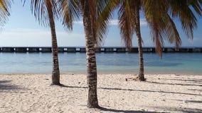 On the beach Playa Giron, Cuba. stock footage