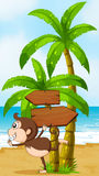 A beach with a playful monkey near the wooden arrowboards Royalty Free Stock Image