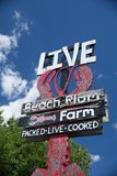 Beach Plum Lobster Farm Royalty Free Stock Photography