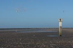 Beach pole IJmuiden Royalty Free Stock Images