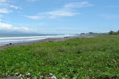 Beach pollution. Heavy pollution on the beach royalty free stock photography
