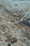 Beach pollution Plastic bottles and other trash on sea beach.  Stock Images