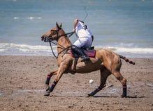 Beach polo. On a beach in Belgium Stock Photography