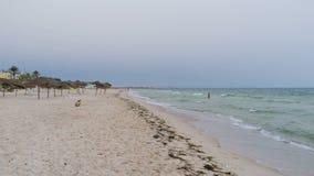Beach in Port El Kantaoui stock video footage