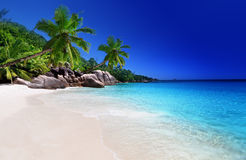 Beach at Praslin island Royalty Free Stock Images
