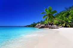 Beach at Praslin island Stock Photography