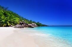 Beach at Praslin island Royalty Free Stock Photo