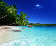 Beach at Praslin island Royalty Free Stock Photography