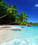Beach at Praslin island Royalty Free Stock Image