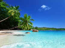 Beach at Praslin island Stock Image