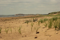 Beach in Prince Edward Island National Park Stock Photography