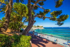 Beach promenade in the Beaulieu-sur-mer village with palm trees, French riviera, France Stock Photo