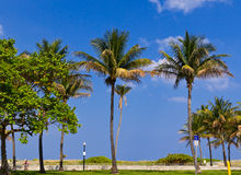 Beach promenade in South Beach Miami Stock Photography