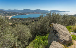 Beach at Propriano in Corsica with boulders in foreground. The beach and town of Propriano with a boulders and olive tress in the foreground and hills behind Stock Photos