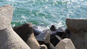 Beach protection Royalty Free Stock Photo