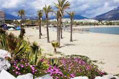 Beach in Puerto Banus. Sandy beach in resort town of Puerto Banus (near Marbella) on scenic Costa del Sol, Andalusia, Spain royalty free stock photos