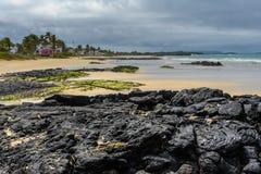 Beach of Puerto Villamil, Isabela island, Ecuador Royalty Free Stock Photo