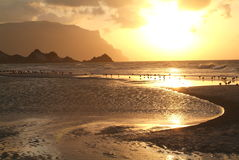 The beach of Qalansiya at Socotra island Stock Image