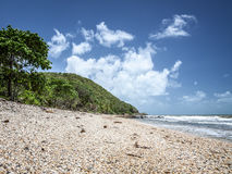 Beach Queensland Australia Royalty Free Stock Photo