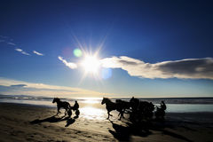 Beach racing Stock Photography