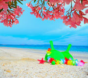 Beach rackets under pink flowers Royalty Free Stock Photo