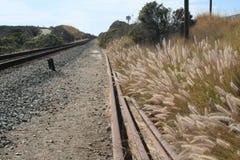 Beach Railroad Stock Image