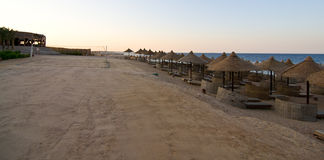 Beach at Red sea. Beach with umbrella at Reds sea Royalty Free Stock Photography