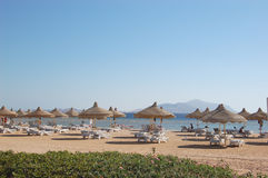 Beach on Red Sea coast, Sharm el Sheikh, Egypt. Hotel's beach on Red Sea coast, Sharm el Sheikh, Egypt Royalty Free Stock Photos