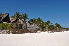 Beach Resort with Palm Trees and Huts Royalty Free Stock Image