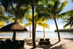 Beach resort with palms tropical Royalty Free Stock Photography