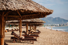 Beach resort with sunbeds Royalty Free Stock Photography