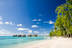 Beach resort at Tikehau island in tahiti Stock Photo