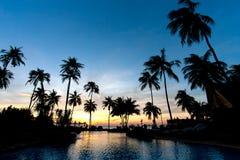 Beach resort. In the tropics Royalty Free Stock Photo