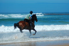Beach rider stock image