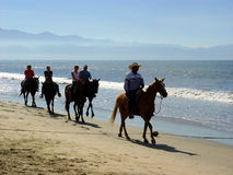 Beach riders. Horseback riders at the beach Stock Images
