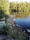 Beach river. With trees around of it with different shades of green royalty free stock image